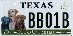 Ducks Unlimited – Three Dogs